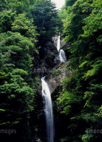 宮の滝の写真素材 [FYI02845327]