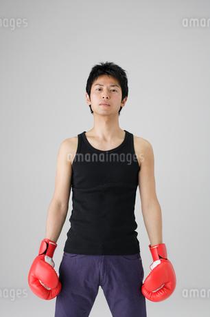 ボクシンググローブと男性の写真素材 [FYI02845499]
