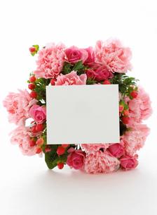カーネーションの花束の写真素材 [FYI02845916]