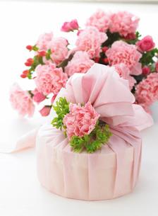 カーネーションの花束とギフトの写真素材 [FYI02846216]