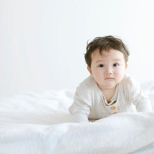 布団の上の赤ちゃんの写真素材 [FYI02846672]