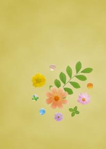 和風の植物イメージの写真素材 [FYI02846677]