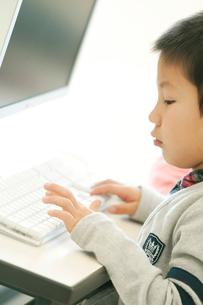 パソコンを操作する小学生の写真素材 [FYI02846689]
