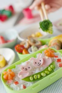 ウサギのキャラクター弁当を作る手元の写真素材 [FYI02846735]