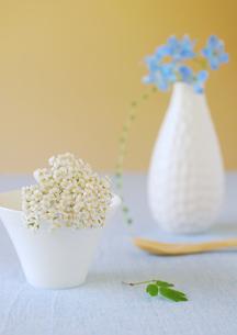 白いカップに飾った白と青い花の写真素材 [FYI02846905]