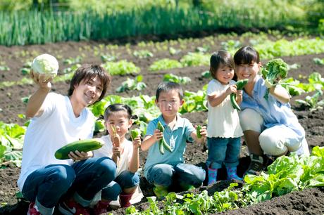 野菜を持ち微笑む家族の写真素材 [FYI02846991]