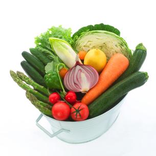 穫れたて野菜の集合の写真素材 [FYI02847155]