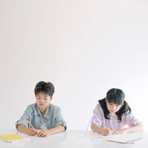 勉強をする男の子と女の子の写真素材 [FYI02847211]