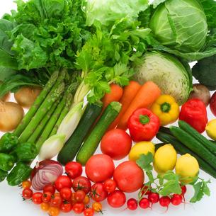 穫れたて野菜の集合の写真素材 [FYI02847250]