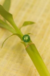 竹の写真素材 [FYI02847330]