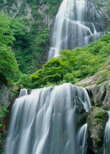 安の滝と緑の写真素材 [FYI02847436]