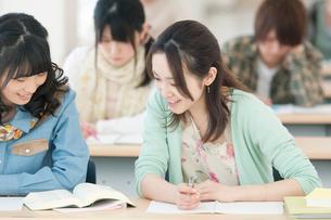 勉強をする大学生の写真素材 [FYI02847496]