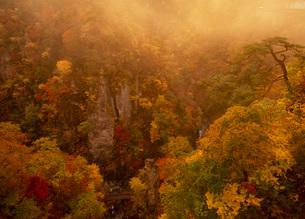 紅葉の鳴子峡の写真素材 [FYI02847992]