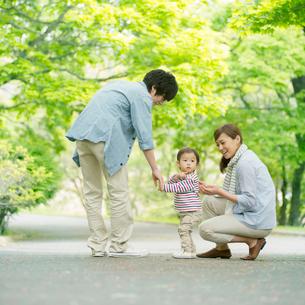 新緑の中を散歩する家族の写真素材 [FYI02848022]