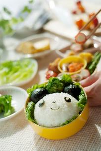 パンダのキャラクター弁当を作る手元の写真素材 [FYI02848159]