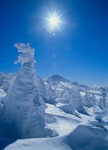 八甲田の雪景色の写真素材 [FYI02848216]