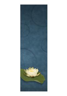 蓮の花のオリエンタルイメージのイラスト素材 [FYI02848695]