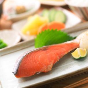 皿盛りの焼き鮭の写真素材 [FYI02849064]