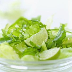野菜サラダの写真素材 [FYI02849155]
