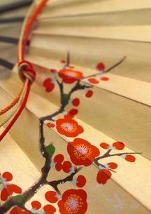 梅が描かれた扇の写真素材 [FYI02849500]