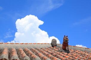 赤瓦とシーサーと夏雲 沖縄県の写真素材 [FYI02849806]