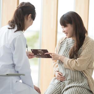 エコー写真を持ち話をする女医と妊婦の写真素材 [FYI02850111]