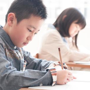 勉強をする小学生の写真素材 [FYI02850162]