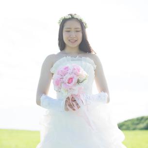 草原でブーケを持つ花嫁の写真素材 [FYI02850321]
