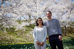 桜咲く公園に立つ外国人カップルの写真素材 [FYI02850485]
