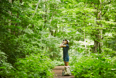 森でカメラを構える女性の写真素材 [FYI02850498]
