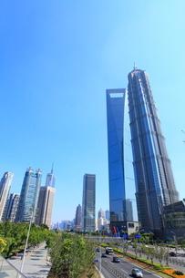上海環球金融中心、金茂大廈など浦東新区のビル群と世紀大道の写真素材 [FYI02850703]