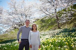 桜咲く公園に立つ外国人カップルの写真素材 [FYI02850855]
