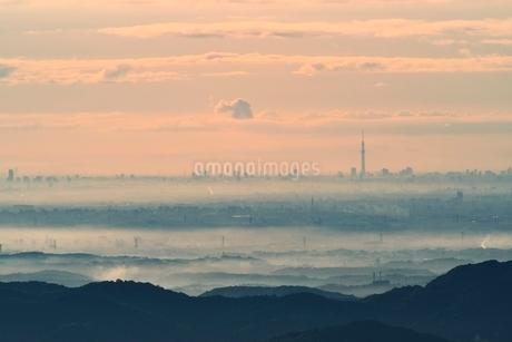 東京スカイツリーと朝霧の写真素材 [FYI02850922]