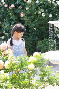 バラが咲き噴水がある庭で遊ぶ女の子の写真素材 [FYI02851043]