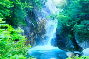 昇仙峡 新緑と仙娥滝の写真素材 [FYI02851085]