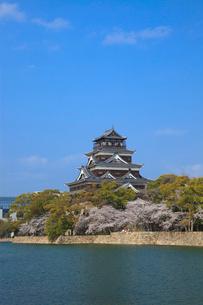 広島城とサクラの写真素材 [FYI02851094]