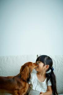 女の子の頬を舐めるカニンヘンダックスフンドの写真素材 [FYI02851146]