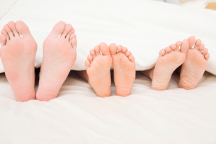 家族の足の裏の写真素材 [FYI02851192]