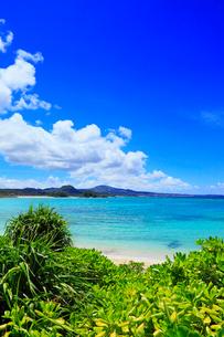 沖縄本島 ブセナビーチの海の写真素材 [FYI02851335]
