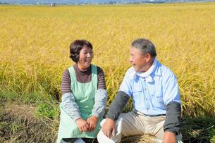 笑顔の農家の夫婦の写真素材 [FYI02851366]