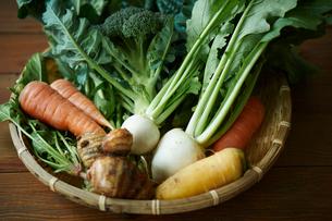 無農薬野菜盛り合わせの写真素材 [FYI02851384]