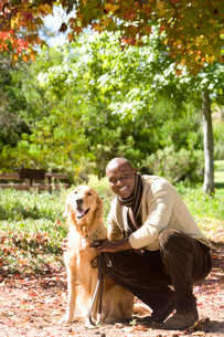 Man crouching beside golden retriever in autumn park, smiling, portraitの写真素材 [FYI02852481]