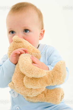 Baby boy (3-6 months) holding teddy bear to mouthの写真素材 [FYI02852540]