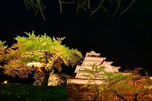 鶴ヶ城(会津若松城) 天守閣と桜のライトアップの写真素材 [FYI02852721]