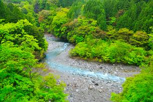高の瀬峡・新緑の写真素材 [FYI02852754]