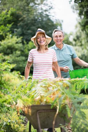 Senior couple with wheelbarrow and bucket in gardenの写真素材 [FYI02853097]