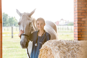 Portrait smiling veterinarian with horse in barnの写真素材 [FYI02853332]