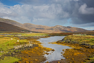 Sunny tranquil view craggy landscape and stream, Loch Aineort, South Uist, Outer Hebridesの写真素材 [FYI02853930]