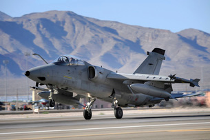 An Italian Air Force AMX fighter landing at Nellis Air Forceの写真素材 [FYI02854036]