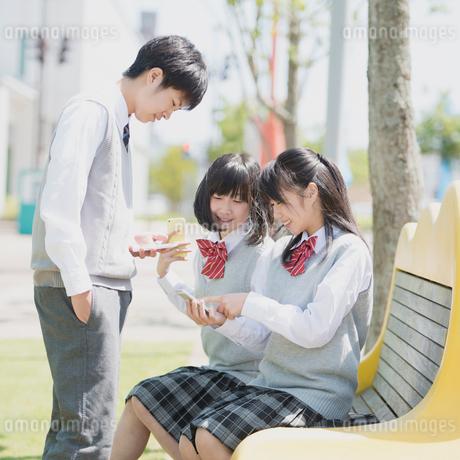 ベンチに座りスマートフォンを見る学生の写真素材 [FYI02854070]